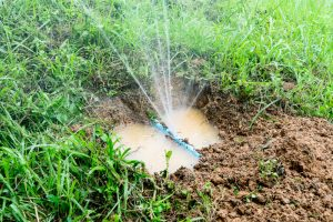 leaking irrigation system